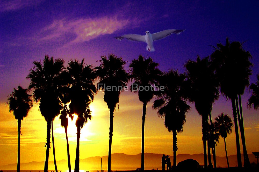 An evening of beauty by Elenne Boothe