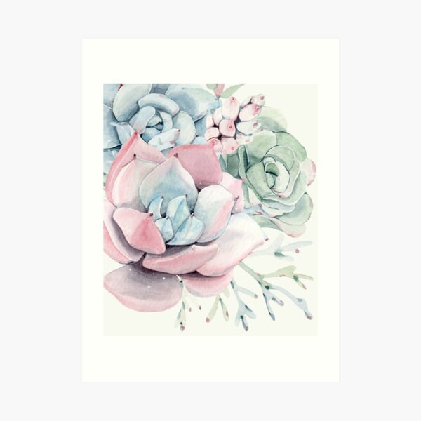 Elegant Succulents Pink and Blue and Green Desert Succulent Illustration Art Print