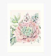 Pretty Succulents Pink and Green Desert Succulent Illustration Art Print