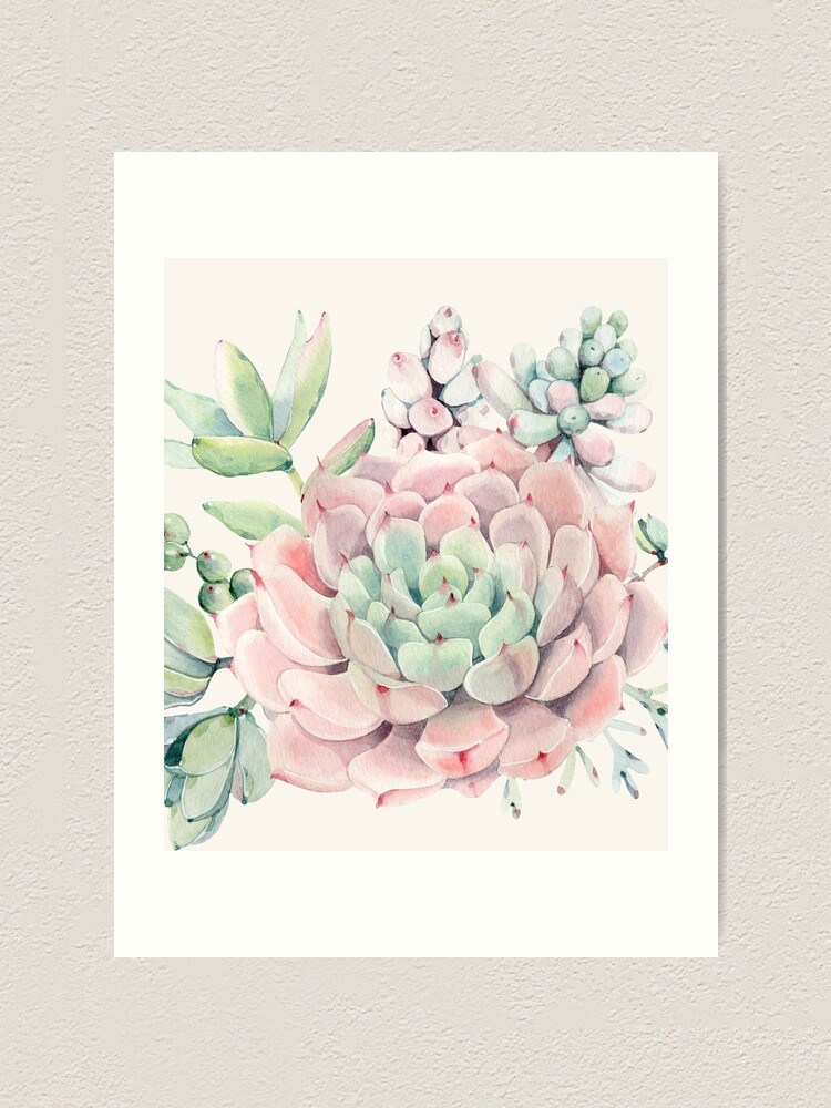 Alternate view of Pretty Succulents Pink and Green Desert Succulent Illustration Art Print