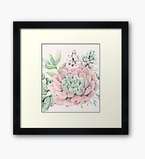 Pretty Succulents Pink and Green Desert Succulent Illustration Framed Print