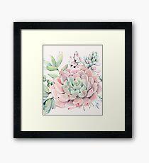 Pretty Succulents Pink and Green Desert Succulent Illustration Framed Print