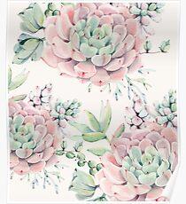 Trendy Succulents Pink and Green Desert Succulent Design Poster