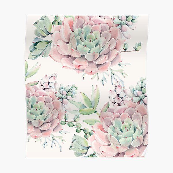 Trendy Succulents Pink and Green Desert Succulent Design Poster