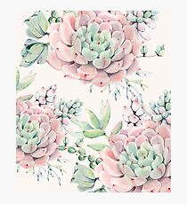 Trendy Succulents Pink and Green Desert Succulent Design Photographic Print
