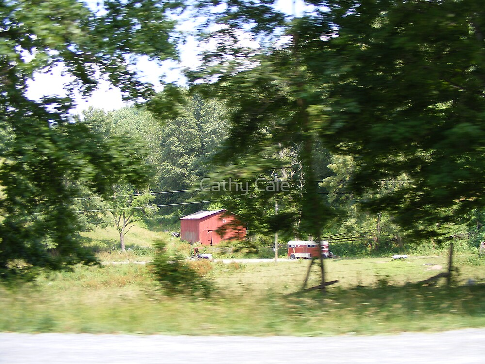 Red Barn - Red Horse Trailer by Cathy Cale