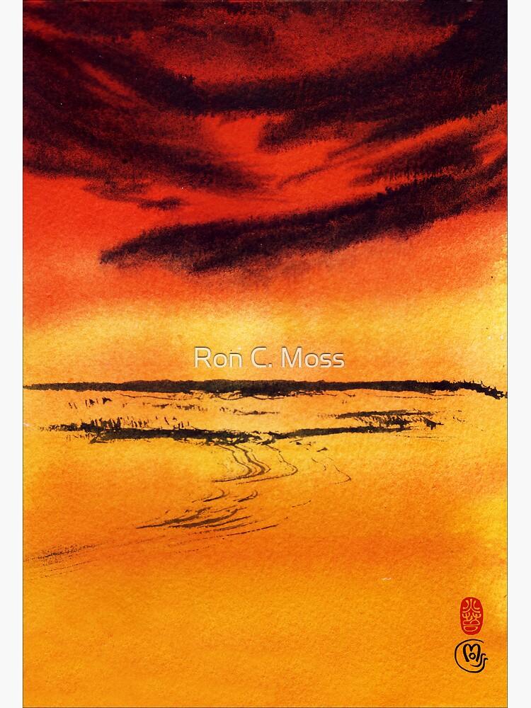 Desert Heat by ronmoss