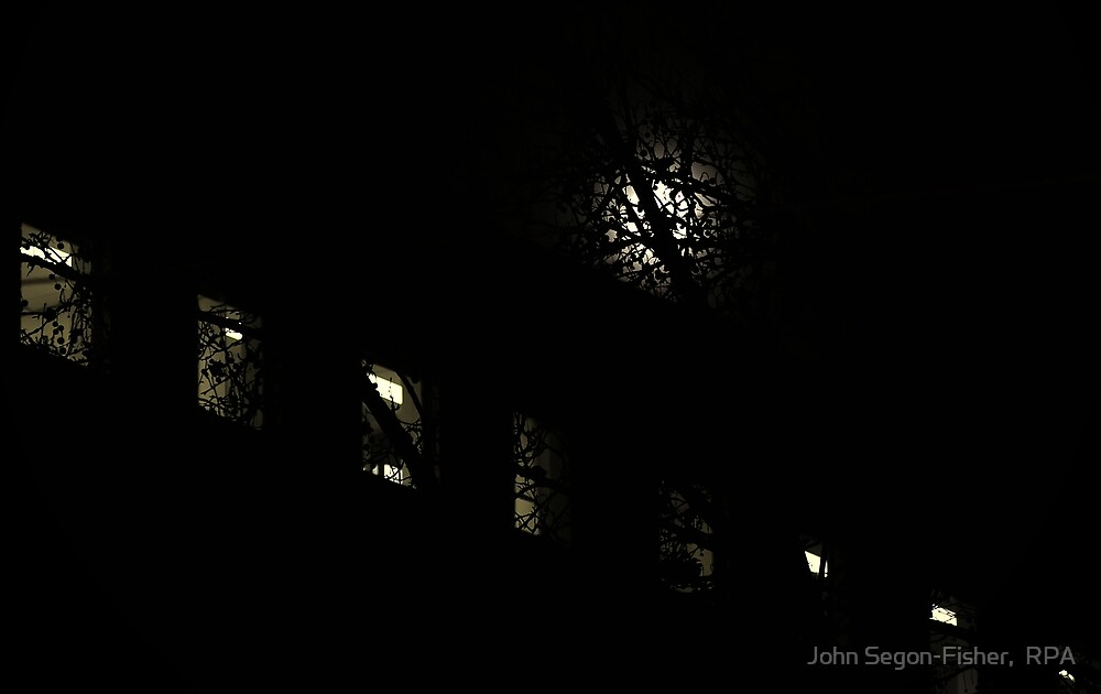 Moon, Tree and Windows - Fitzroy Street, St Kilda by John Segon-Fisher,  RPA