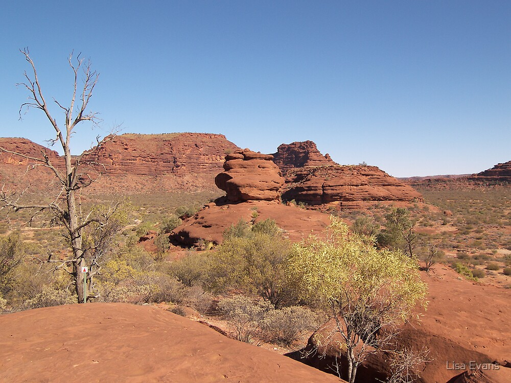 Kalarranga Lookout, Palm Valley, Northern Territory. by Lisa Evans