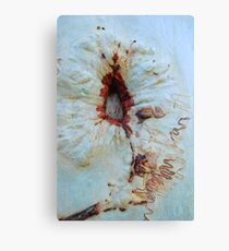 Scribbly Art Canvas Print