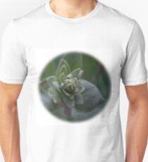 lambs ear T-Shirt