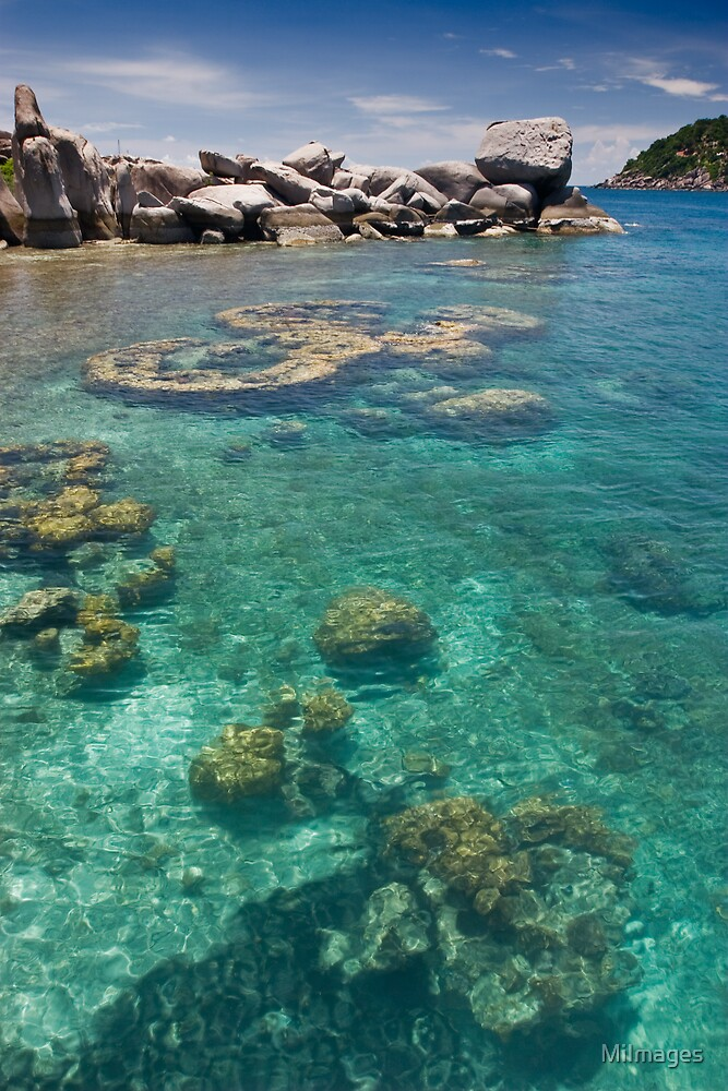 Colours of Koh Nangyuan by MiImages