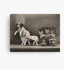 Whoa there Mr Pony! Three kittens in a toy horse cart and dog leading Canvas Print