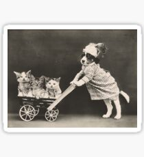 Puppy pushing three kittens in toy pram Sticker