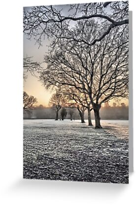 HDR Frosty Morning 2 by Peter Barrett