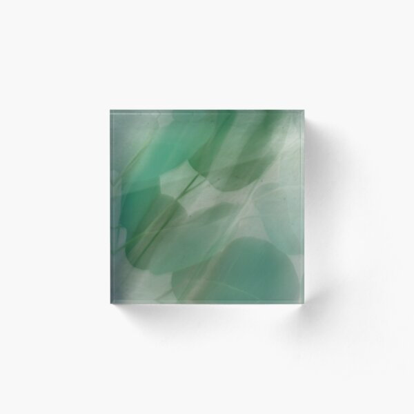 Fleur Blur Series-Abstract Eucalyptus Leaves Acrylic Block