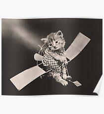 Kitten flying light airplane Poster
