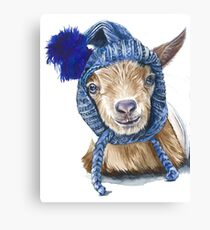 Lawson the goat Canvas Print