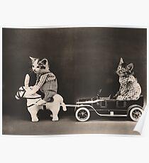 Kitten on toy donkey pulling kitten in toy car Poster