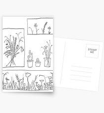 wildflowers illustrated print Postcards