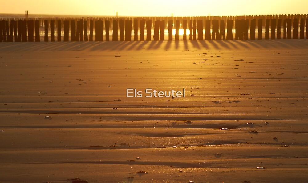 GoldenPattern by Els Steutel