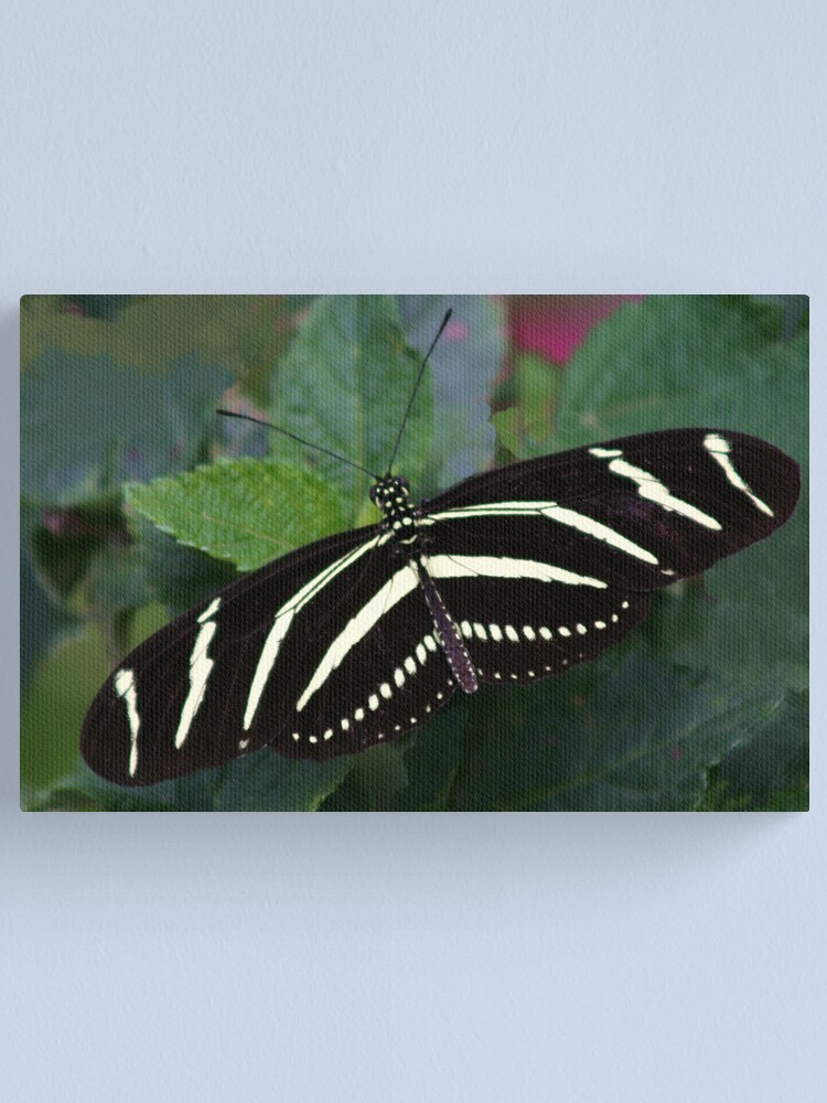 Alternate view of Zebra Longwing Canvas Print