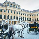 Horse-drawn Carriage Parked in front of Schönbrunn Palace by Hotaik  Sung