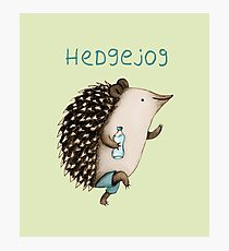 Hedgejog Photographic Print
