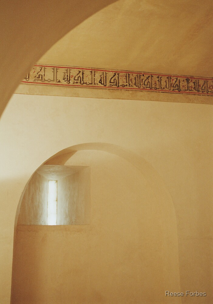 Aljaferia Light by Reese Forbes