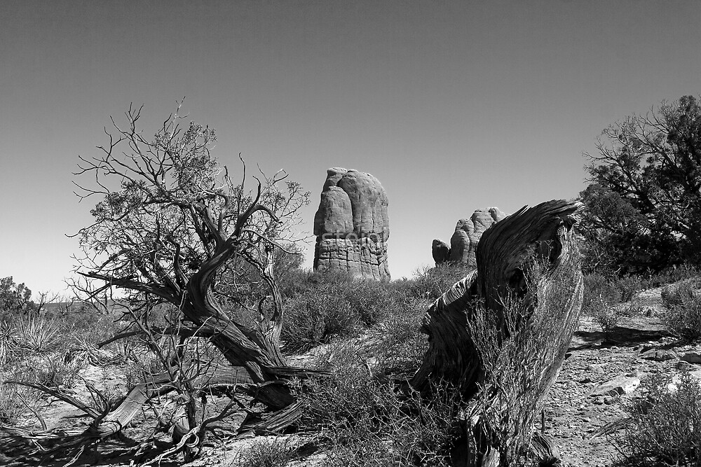 Old West by steini