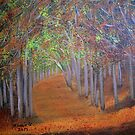 Autumn Forest by maggie326
