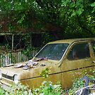 A Tumble-Down Garage And A Robin Reliant by lezvee