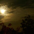Midnight Moon - Clouds & Trees by Gilberte