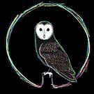 Barn owl  by ZTLG