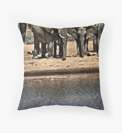 Elephant Waterhole Throw Pillow