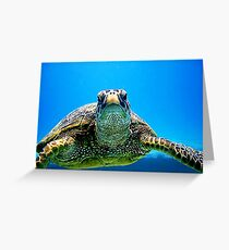 Slow Mover  Greeting Card