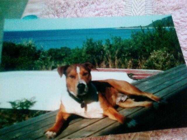 bob/ sister beach by doc22