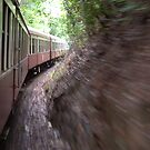 the Kuranda Train ride by Chris Cohen
