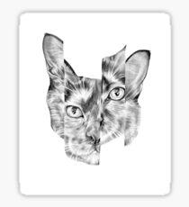 Kitty Split Sticker