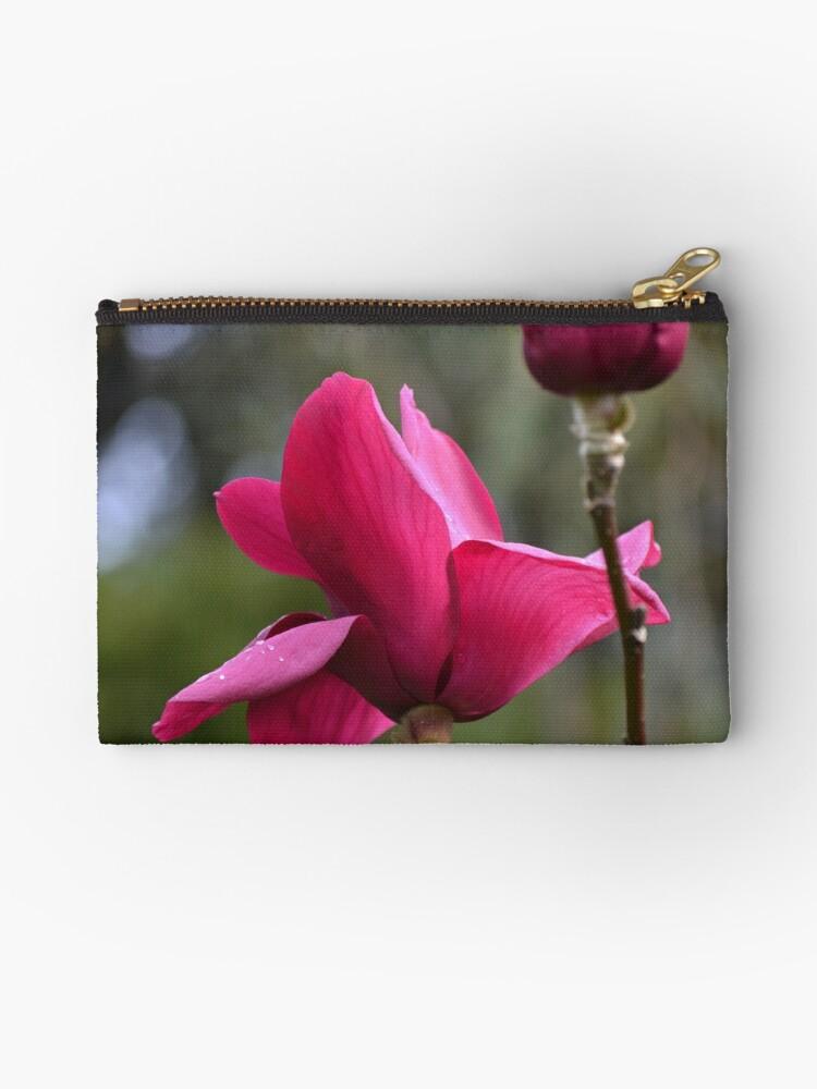 Magnolia - 'Genie' by lizdomett