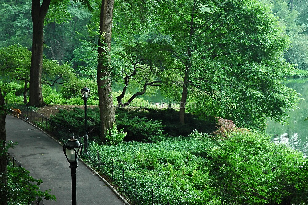 Central Park West by joan warburton
