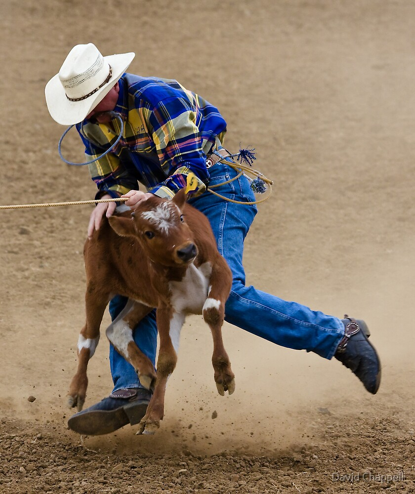 Calf Roper Dance by David Chappell
