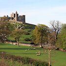 Rock of Cashel by John Quinn