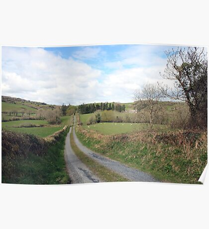 Scenic Irish country road Poster