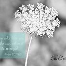 Queen Anne Lace w/Scripture Judges by peabea