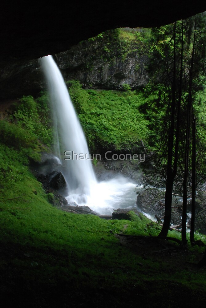 North Falls by Shawn Cooney