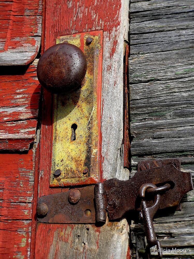 The Red Door by Felicia Moore