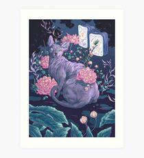 Midnight Sphynx Art Print
