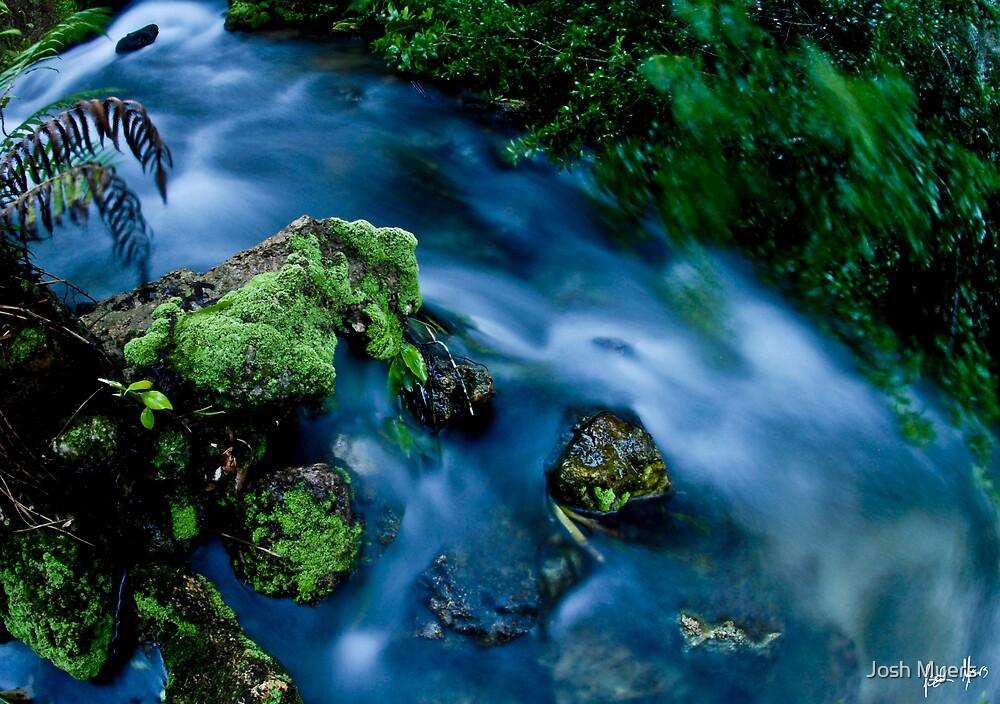 Juniper Springs Water Mill by Josh Myers