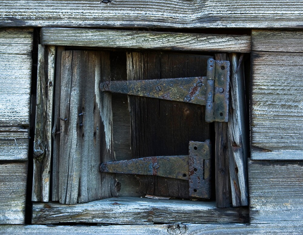 Hinges by Ron Hindhaugh
